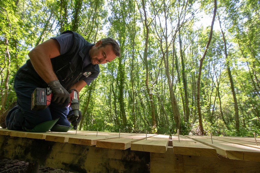 Création d'un itinéraire de randonnée autour de l'étang d'Aureilhan - Pose du platelage