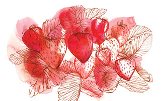 Strawberries - food illustration | by Sharon Farrow