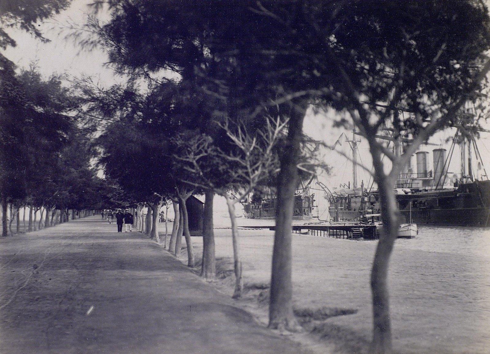 25. 1890. Египет. Бульвар на берегу Суэцкого канала