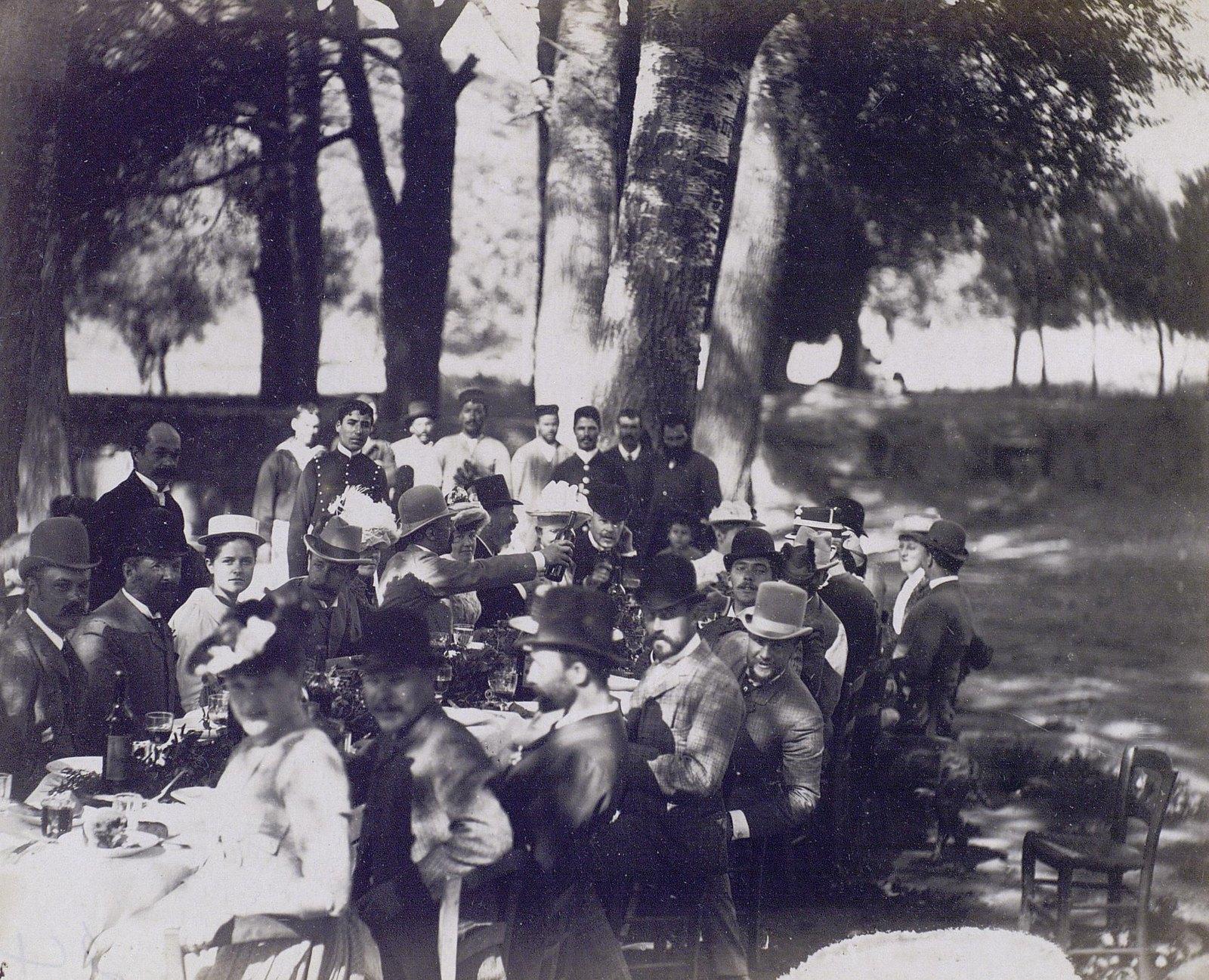 12. 1890. Греция. Пикник под деревьями