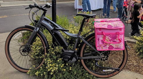 ebike and panniers