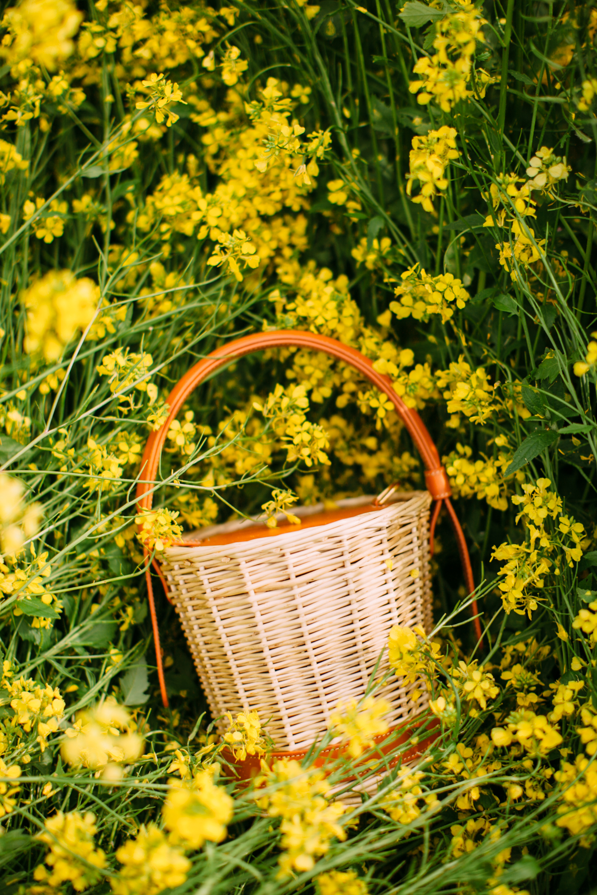 floral dress yellow field-38
