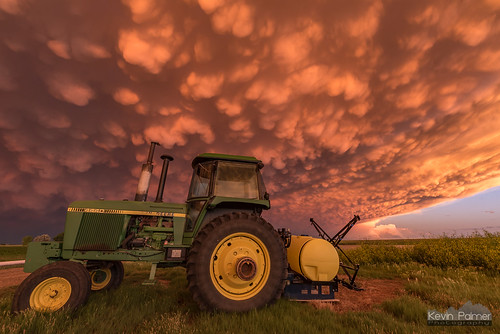 Farmer's Delight | by kevin-palmer