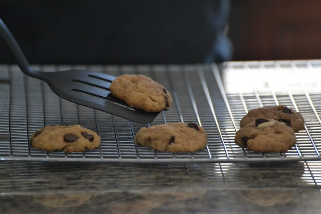 Chocolate Chip Cookies (Vegan)