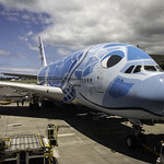 A day to commemorate the first two new models of ANA at Honolulu Airport