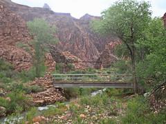 Bridges of Phantom Ranch - Grand Canyon