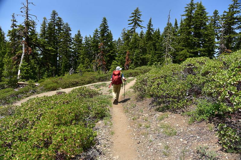 Observation Peak Hike