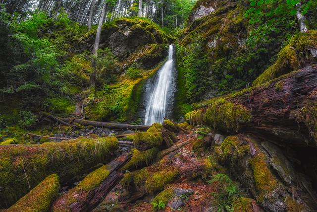 Camp Creek Falls II