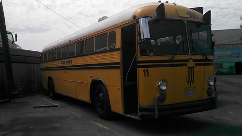 Pacer bus 11