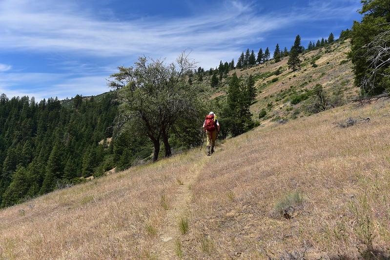 Little Grayback Hike