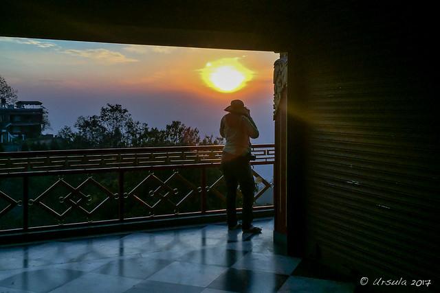 Catching the Sunrise 7004