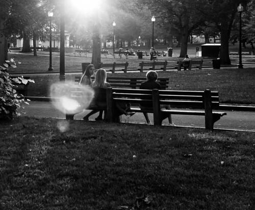 boston ma beaconhill sunset twilight bostoncommon frogpond bw blackandwhite monochrome contrast lensflare lensflaredontcare sunlight