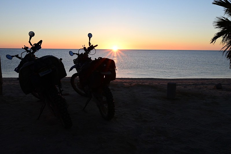 The two steeds enjoying the sunrise.