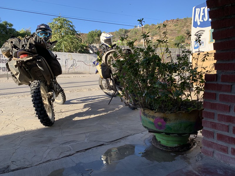Flower pot in San Ignacio