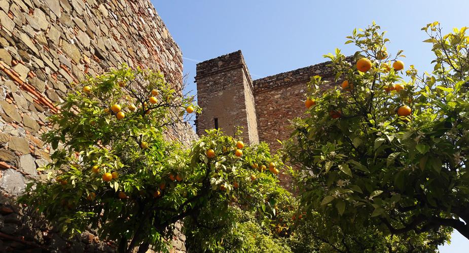 Malaga Spanje: Alcazaba | Mooistestedentrips.nl