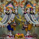 ISKCON Vrindavan Deity Darshan 11 July 2019