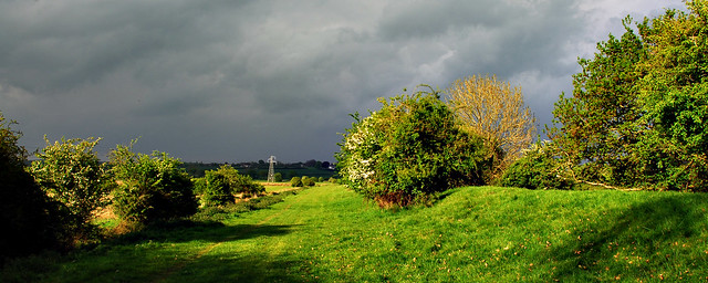 BY the Royal Military canal at Kennardington