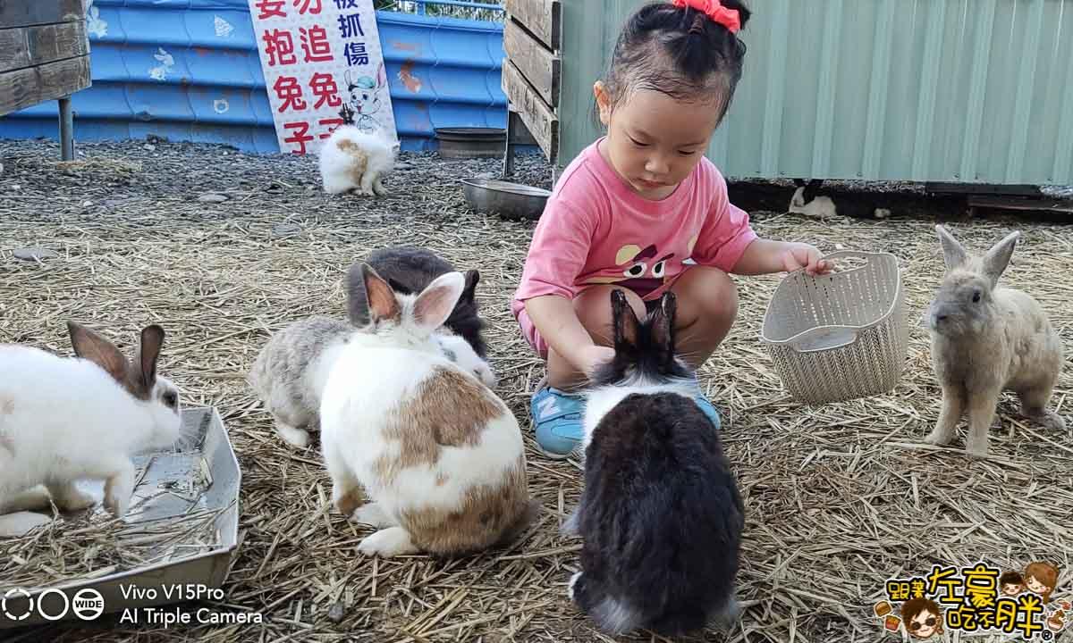 屏東蕭家大院兔子餐廳-2