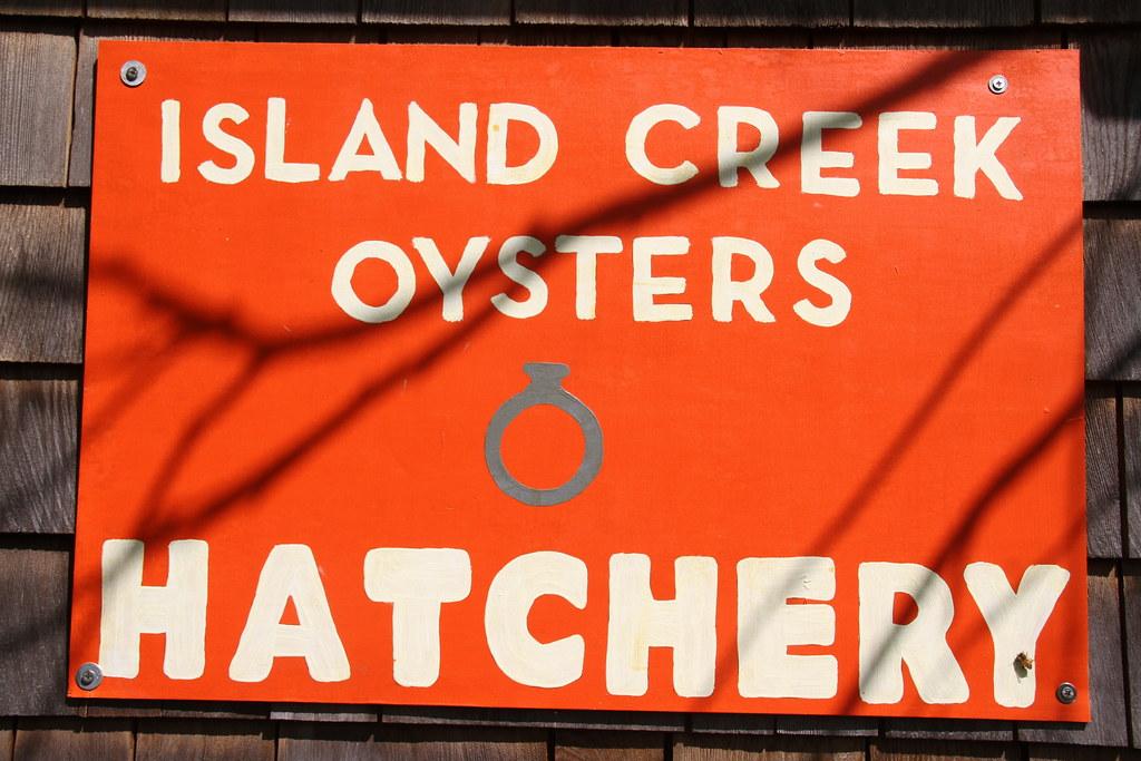 Island Creek Oysters Summer 2019
