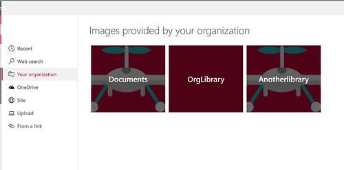 Organization assets