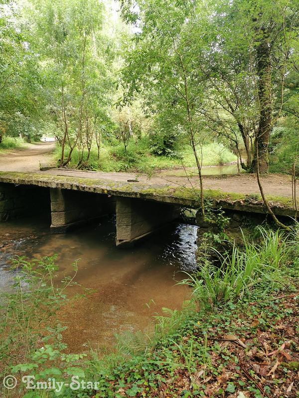 Camino Portugues - Tag 9-112707