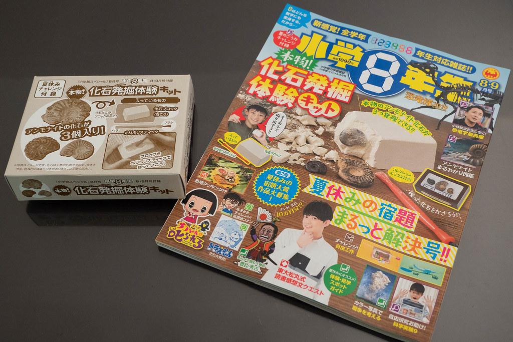 syougaku8nensei_kaseki-1