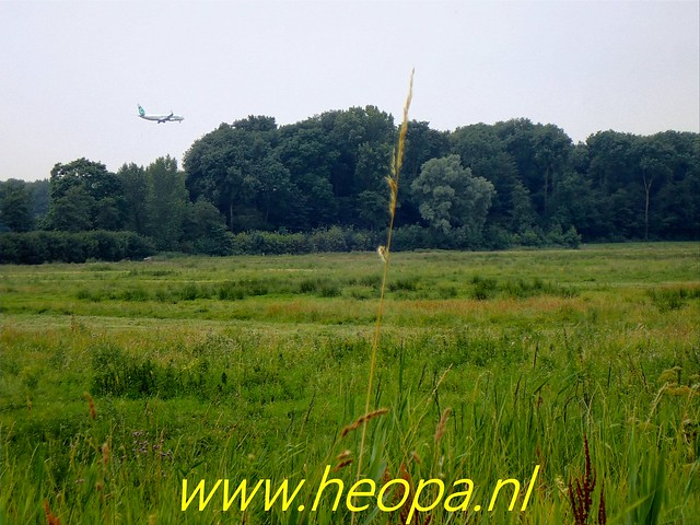 2019-07-11 Amsterdamsebos,        wandeling        19 Km ( (19)
