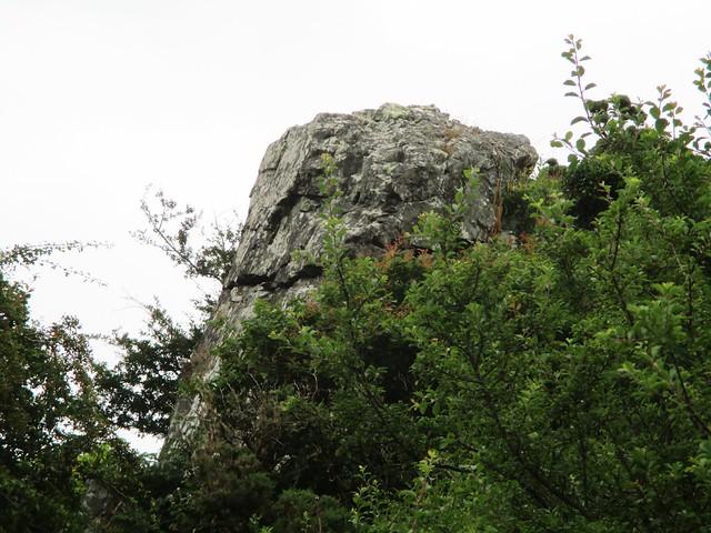 Brent Hill South West Outcrop SX 7013 6153