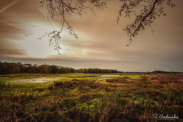 National Park De Maasduinen, Netherlands