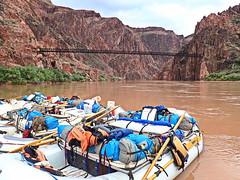 Rafts & Kaibab Bridge - Grand Canyon