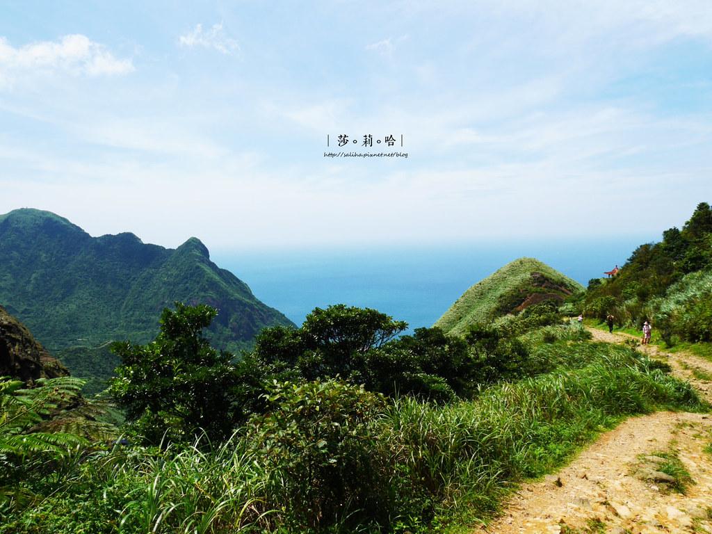 新北瑞芳一日遊景點推薦無耳茶壺山超美海景登山步道 (6)