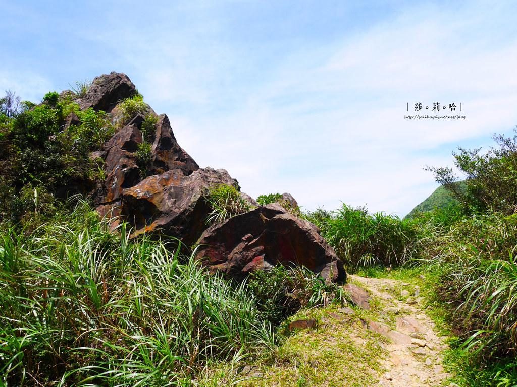 新北瑞芳一日遊景點推薦無耳茶壺山超美海景登山步道 (3)