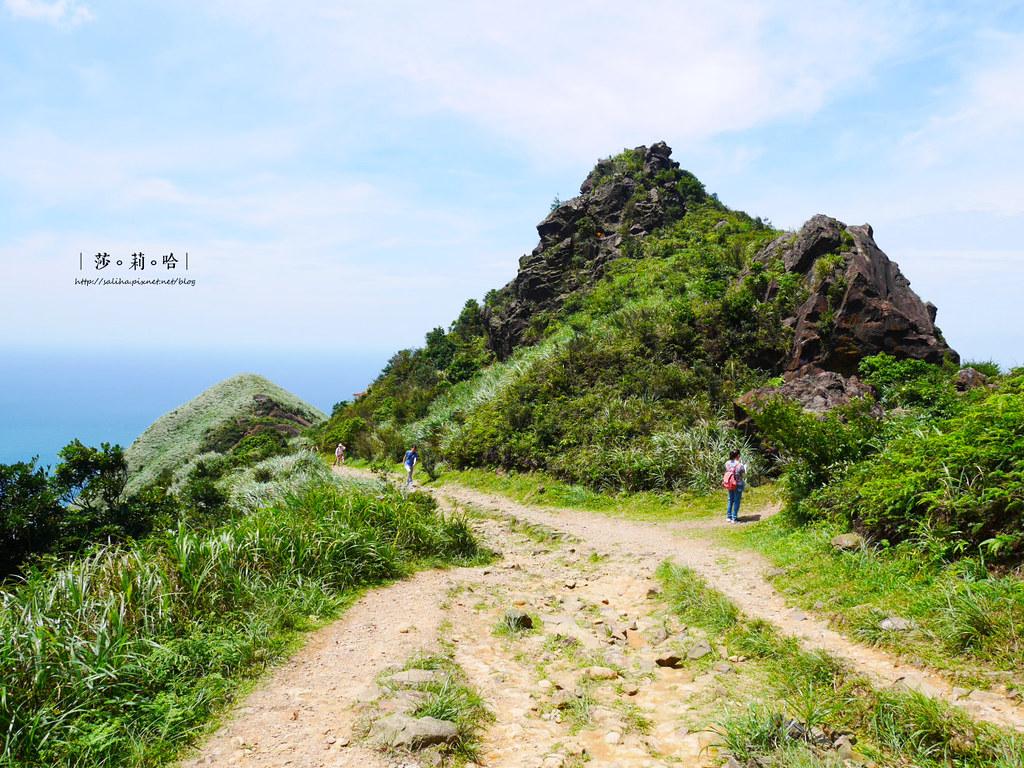 新北瑞芳一日遊景點推薦無耳茶壺山超美海景登山步道 (4)