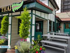 Fern Thai Bellevue | Bellevue.com