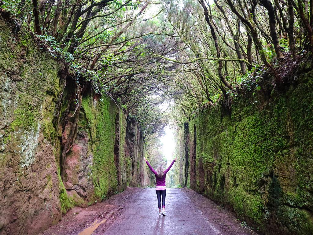 Camino viejo a Pico del Inglés