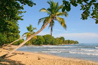 Palmenstrand 2, Costa Rica