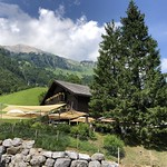 2019_07_12_Klöntalersee_Fred(56)