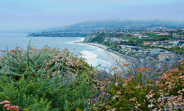 Dana Point Headlands Conservation Area in southern California