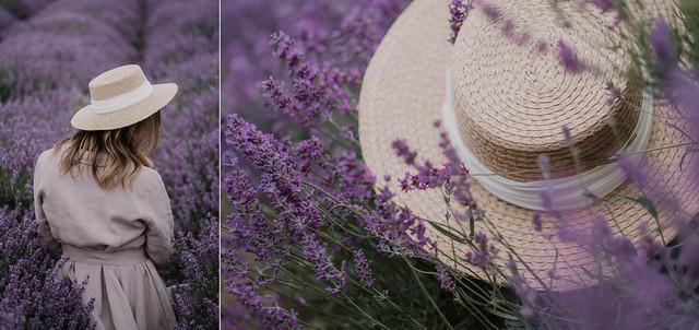 Lavender moments