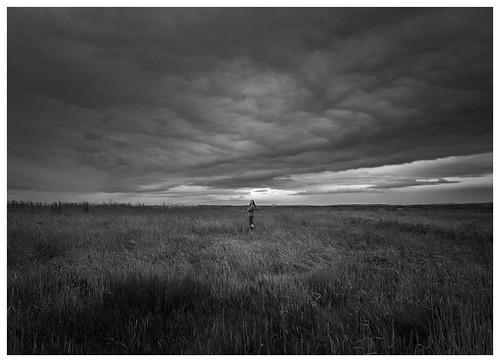 neston marshes wirral blackwhite grass summer clouds border landscape