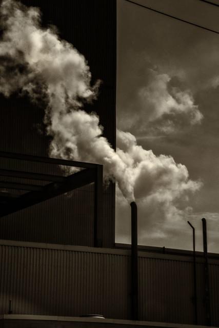 Steam--Dearborn, MI