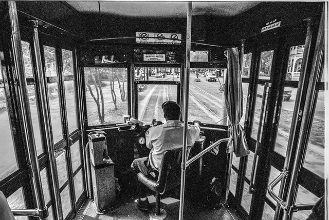 Trolley View, New Orleans