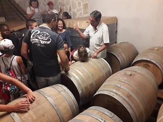 Cap vino (2)