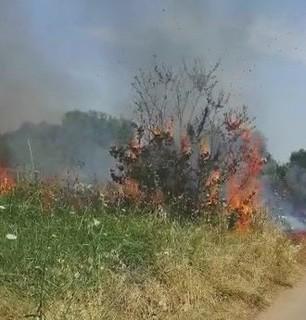 Incendio in via Sammichele (1)