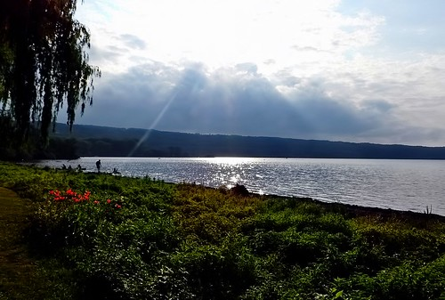 stewartpark ithacany landscape sunset cayugalake orangelilies sky clouds rays tree weepingwillow people silhouettes valley lake shore water sparkles