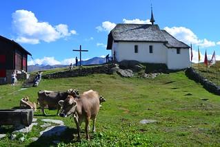 Pasture Church by Jim