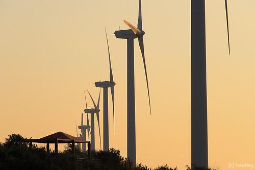 windmill fukuoka kitakyushu wakamatsu coastal sunset power plant 若松 福岡 北九州 響灘 hibikinada windfarm 風力発電 風車 夕陽