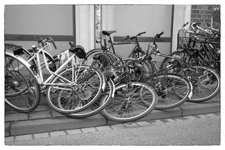 Fahrrad-Domino
