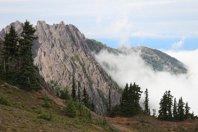 Washington - Olympic National Park