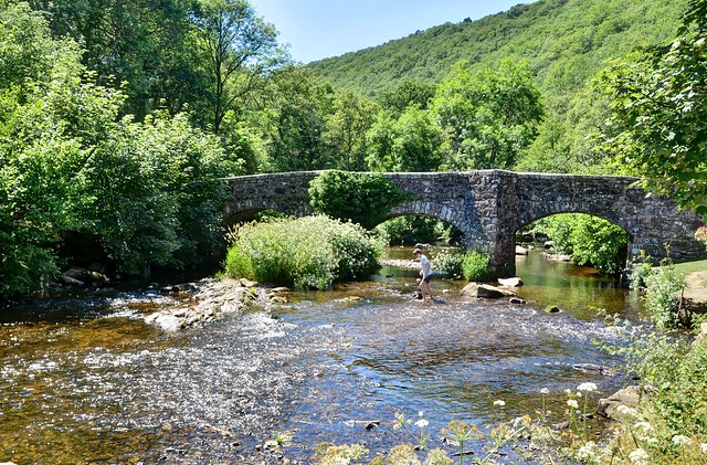 Fingle Bridge, Teign Gorge, Dartmoor